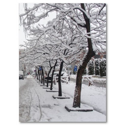 Αφίσα (χιόνι, δρόμος, δέντρο, χειμώνας)